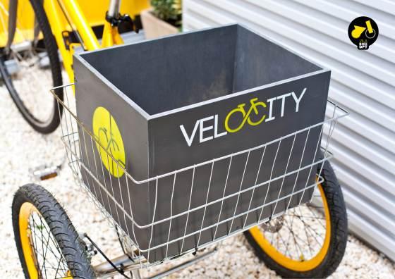 velocity_antDep3